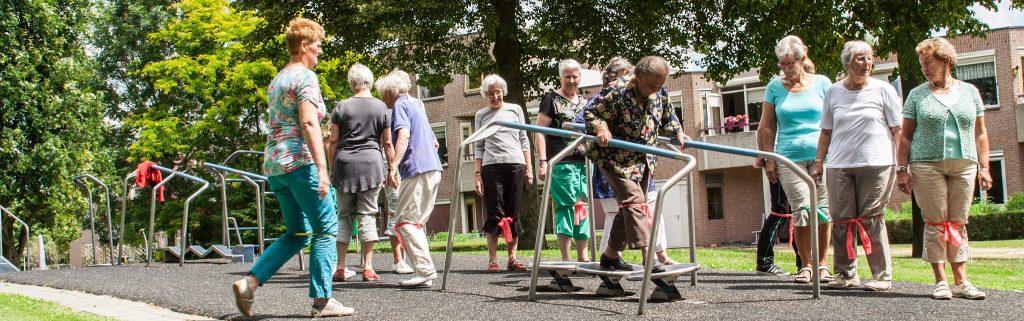 Beweegtoestel Wankelweg voor ouderen, buiten fitness senioren